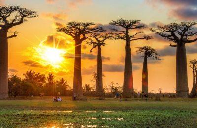 Voyage en Afrique : les questions de santé s'imposent !