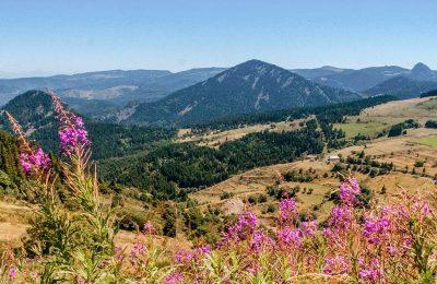 Camping dans le Cantal : votre guide pour bien profiter des vacances